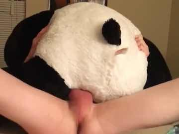 Desperate Gay Boy Fucking Stuffed Panda